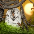 Team of ants adjusting time on clock, fantasy - Stock Photo
