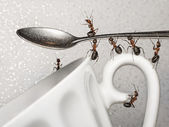 Have a break, team of ants and spoon over coffee cup — Стоковое фото