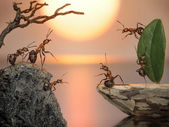 Team of ants sailing back home, fantasy — Stock Photo