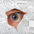 Eye looking through a hole in electronic circuit — Stock Photo #4109866