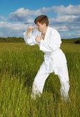 Dövüş sanatları nişanlı — Stok fotoğraf
