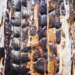 Charred surface of wood after fire — Stock Photo