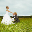 Groom kisses hand of bride in field — Stock Photo