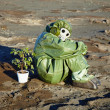 Man in chemical suit and houseplant in desert — Stock Photo