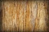 Background - brown rotten tree with cracks — Stock Photo