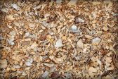 Waste of woodworking manufacture - sawdust background — Stock Photo