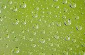Kropelki wody deszczowej — Zdjęcie stockowe