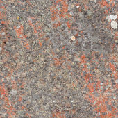 Seamless texture - rock with lichen — Stock Photo