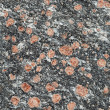Seamless texture - stone with red minerals — Stock Photo