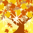 Vector illustration of the autumn tree — Stock Vector