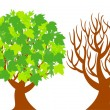Two trees represent of different seasons — Imagen vectorial