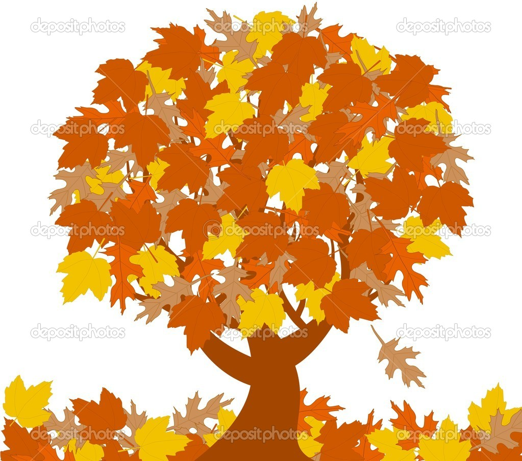 Vector illustration of the autumn tree  isolated on white background. — Stock Vector #4662124