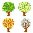Vector illustration of the four seasons trees isolated on white background. — Stock Vector