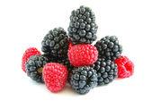 Raspberry and blackberry — Stock Photo