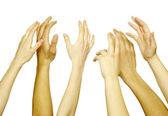 Ruce na bílém pozadí — Stock fotografie