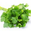 Parsley — Stock Photo #5261791