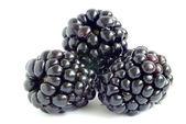 黑莓手机 — 图库照片