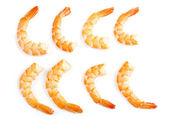 Shrimp — Stock Photo