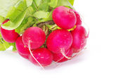 Radishes — Stock Photo