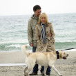 Mid aged couple with dog on sea shore — Stock Photo