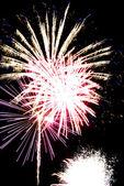 Celebration fireworks — Stock Photo