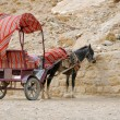 Royalty-Free Stock Photo: Donkey and Cart at Petra