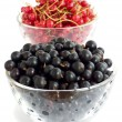 Berries — Stock Photo #4169697