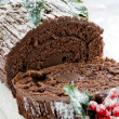 Yule-log — Stockfoto #4263970