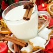 Snack for Santa — Stock Photo #4275606