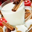 Snack for Santa — Stock Photo