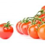 Cherry tomatoes — Stock Photo #4109828