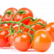 Cluster of cherry tomatoes — Stock Photo
