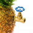Pineapple with water tap - Stock Photo