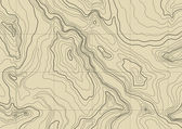 Abstract topographic map — Stock vektor
