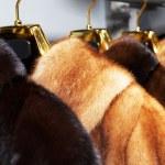 Rich female fur coats — Stock Photo