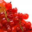 Red currant and kiwi - Stock Photo
