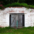 Old brick cellar — Stockfoto