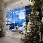 Christmas tree — Stock Photo #4910095