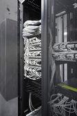 Network equipment — Stock Photo