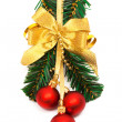Christmas ornament — Stock Photo #5243567