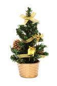Small Christmas tree — Stock Photo