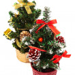 Stock Photo: Small Christmas tree