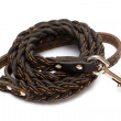 Leather leash — Stock Photo