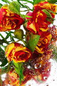 Roses on the mirror — Stock Photo