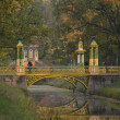 Bridge in the park - Stock Photo