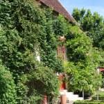 Farm buildings, Chenonceau castle — Stock Photo
