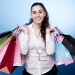 Stock Photo: Attractive woman with shopping bags