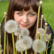 Portrait of beauty girl with dandelions. — Stock Photo