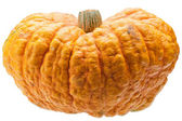 Orange pumpkin isolated on white background. — Stock Photo