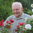 Portrait of grower of roses — Stock Photo